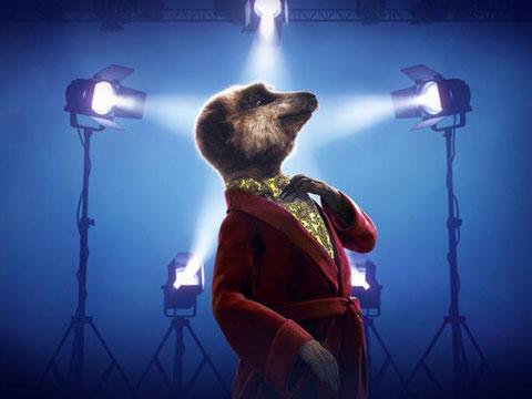 meerkat-movies